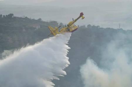 عکسهای جالب,عکسهای جذاب,آتش سوزی جنگلی