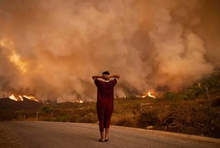 عکسهای جالب,عکسهای جذاب,آتش سوزی جنگل ها