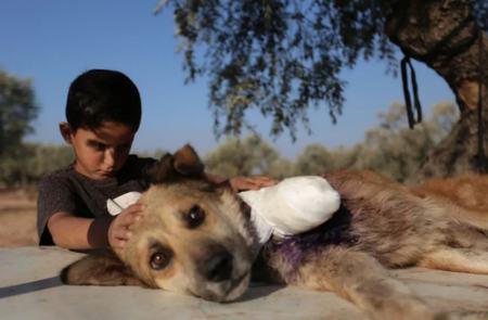 عکسهای جالب,عکسهای جذاب, کودک سوری