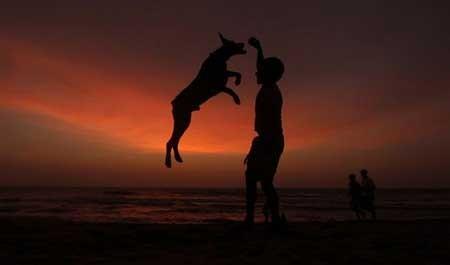 تصاویر,تصاویر زیبا,تصاویر روز,عکس