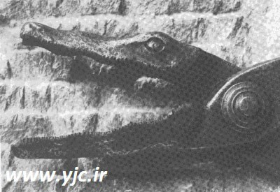 عجیبترین وسایل شکنجه در قرون وسطی +عکس