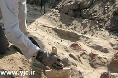 قدیمیترین آثار کشف شده روی زمین