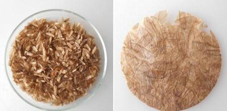 اخبار,اخبار گوناگون,فرآیند تولید پلاستیک زیستی,کارایی پوسته بدن سوسک