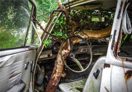 اخبار , اخبار گوناگون , قبرستان خودرو