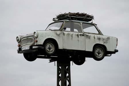 لک لک ها روی یک خودروی اسقاطی متعلق به آلمان شرقی سابق لانه ساخته اند