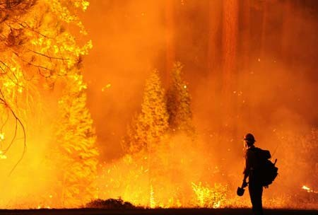 آتش سوزی جنگل های کالیفرنیا
