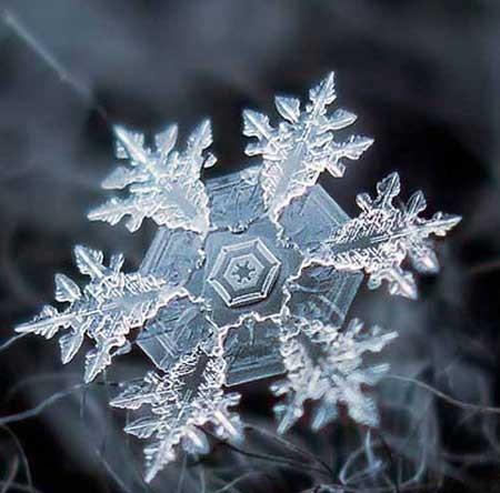 عکاسی میکروسکپی از بلور برف