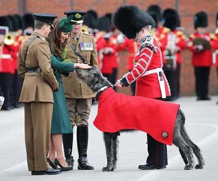 عکسهای جذاب,تصاویر جالب,ملکه بریتانیا