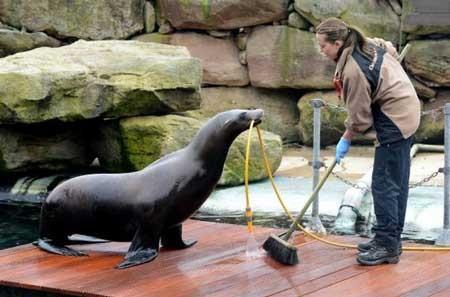 عکسهای جالب,تصاویر جالب,باغ وحش
