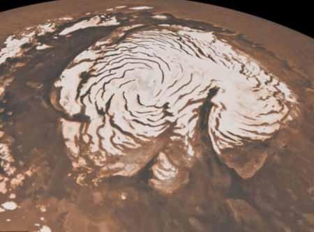 اخبار,اخبار علمی,میکروبهای مریخی