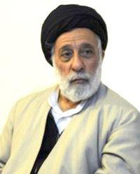 اخبار,اخبار سیاسی,سیدهادی خامنهای