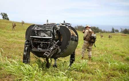 اخبار,اخبار علمی , سگ مخصوص عملیات جنگی