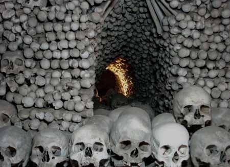 اخبار,اخبار گوناگون,موزۀ مردگان