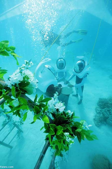 اخبار,اخبار گوناگون ,جشن عروسی زیر آب