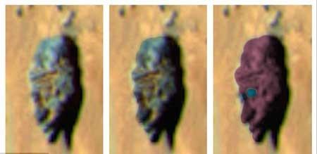 اخبار,اخبار علمی , کره مریخ