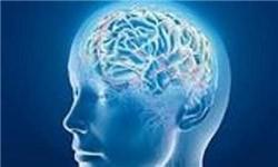 تحریک مغز در چند دقیقه برای افزایش حافظه