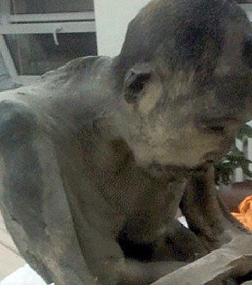 اخبار,اخبار علمی,عجیبترین تصاویر از مومیایی نوادگان چنگیزخان