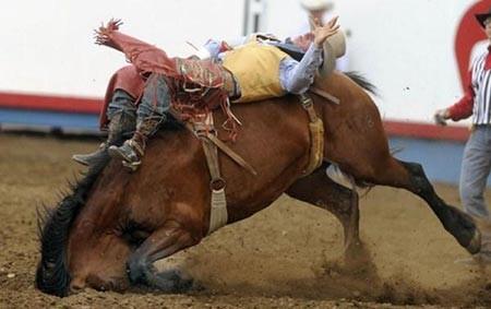 عکسهای جالب,مسابقات اسب سواری ,تصاویر دیدنی