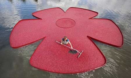 فستیوال گل ,تصاویر دیدنی,تصاویر جالب