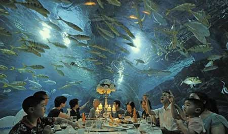 عکسهای جالب,رستورانی زیر یک آکواریوم,تصاویر دیدنی