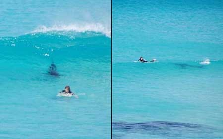 تصاویر دیدنی,موج سواری,تصاویر جالب