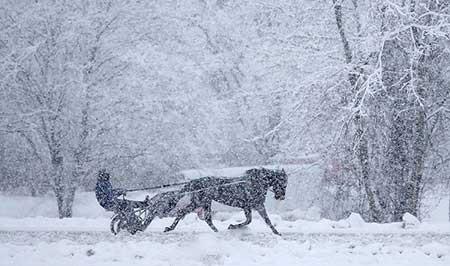 عکسهای جالب,منظره برفی ,تصاویر دیدنی