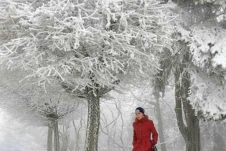 تصاویر دیدنی,منظره زمستانی,تصاویر جالب