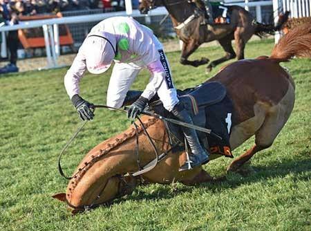 عکسهای جالب,مسابقات اسب سواری,عکسهای جذاب