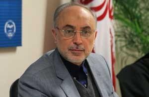صالحی: سخنان بنده، ظریف و عراقچی فکتشیتند