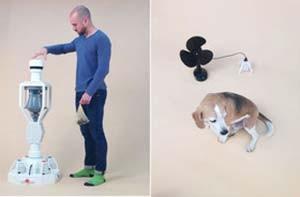 اخبار,اخبار علمی,تبدیل فضولات سگ به برق