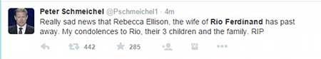 اخبار,اخبار ورزشی , ریو فردیناند