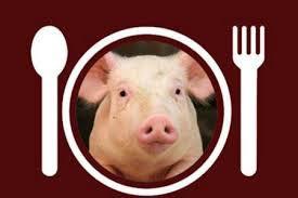 گوشت خوک حلال هم آمد!