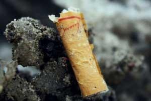اخبار,اخبار علمی , فیلترهای ته سیگار