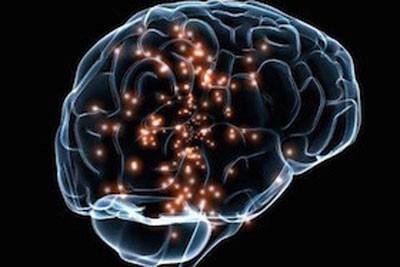 اخبار , اخبار علمی,شناخت مغز,نقاط مختلف مغز