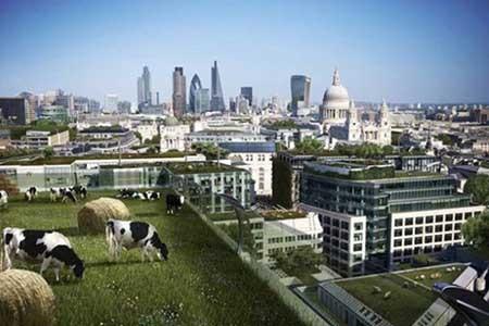 شهرهای آینده را اکنون ببینید