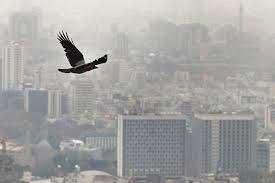 اخبار,اخبار اجتماعی ,آلودهترین نقاط تهران