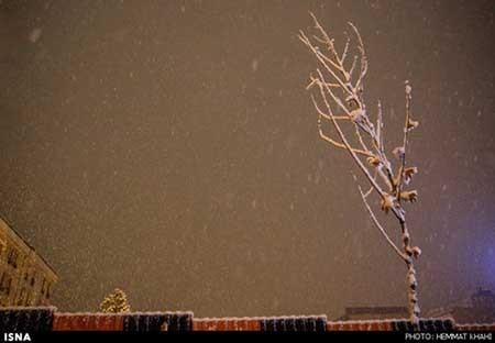 اخبار,اخباراجتماعی ,بارش برف در تهران