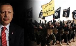 تودی زمان: اردوغان میخواهد رسانههای ایران را هم کنترل کند