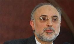 پیشنویس قطعنامه شورای حکام آنطور که باید باشد نیست/ امروز پرونده هستهای ایران در شورای حکام بسته میشود