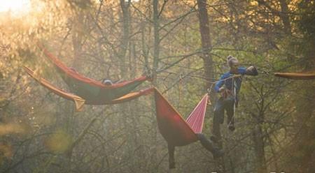 اخبار,اخبار گوناگون,یک استراحت بینظیر در وسط جنگل بین زمین و آسمان