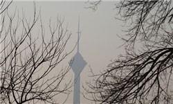 هوای تهران بازهم «ناسالم» است/ عموم مردم از فعالیت در فضای باز اجتناب کنند
