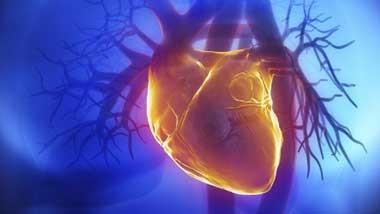 اخبار,اخبار علمی,ترمیم بافتهای آسیبدیده قلب