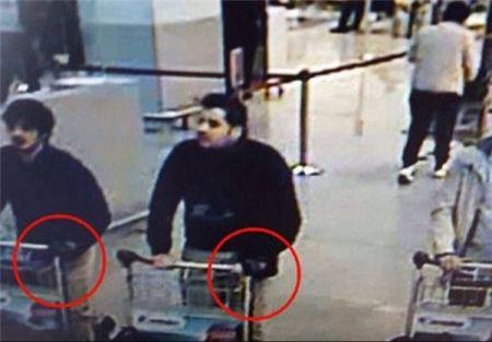 اخبار بین الملل ,خبرهای  بین الملل, عاملان حملات تروریستی