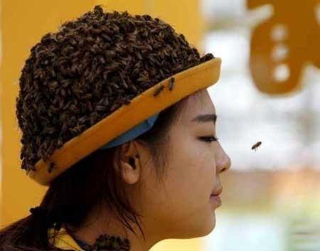 عکسهای جالب,جشنواره زنبورداری ,عکسهای جذاب