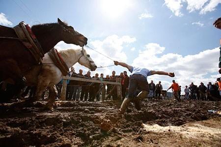 عکسهای جالب,مسابقات با اسب , تصاویر دیدنی
