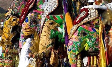 عکسهای جالب,تصاویر دیدنی, جشنواره ی فیل ها