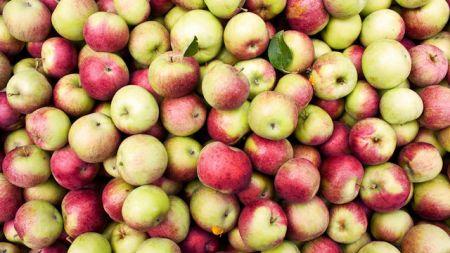 اخبارعلمی ,خبرهای   علمی,سیب