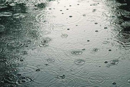 اخبار اجتماعی  ,خبرهای اجتماعی,بارش  باران