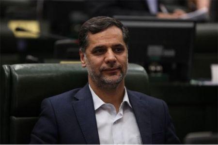 اخبارسیاسی,خبرهای سیاسی,نقوی حسینی