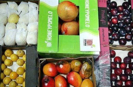 اخباراقتصادی ,خبرهای اقتصادی , واردات میوه